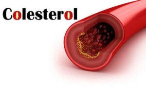 produse care cresc colesterolul